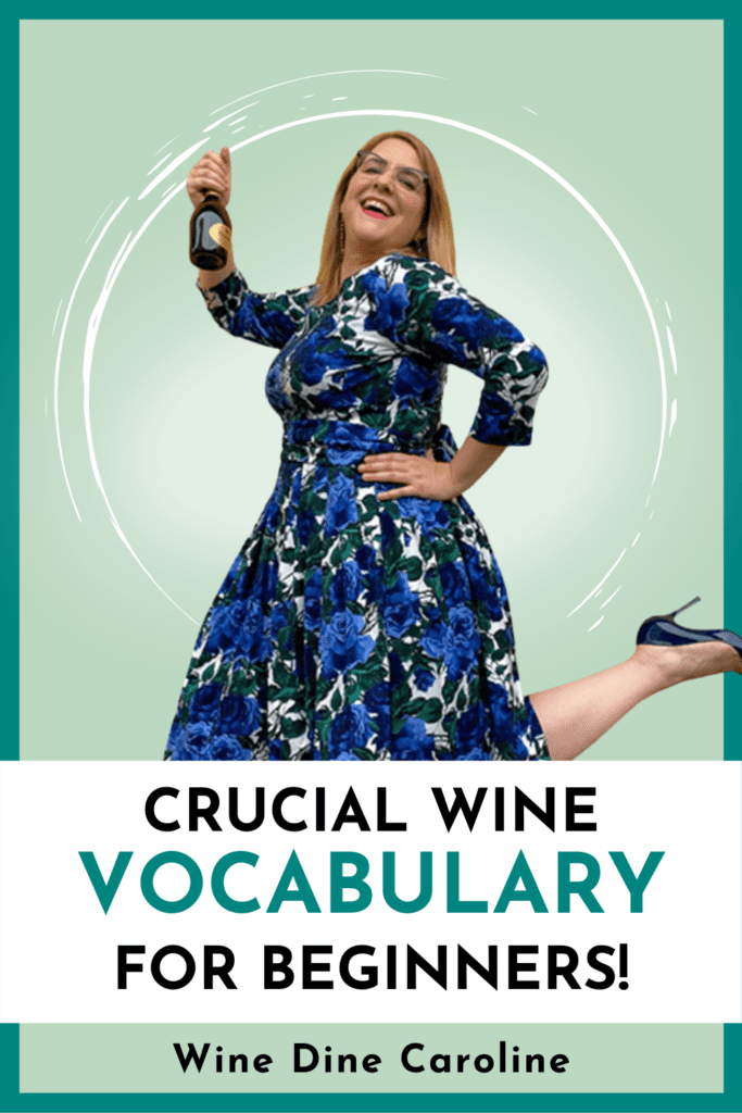 Crucial wine vocabulary for beginners with wine dine caroline in a blue dress holding a bottle of champagne. In this video, you will learn CRUCIAL wine vocabulary and wine words to master wine tastings.